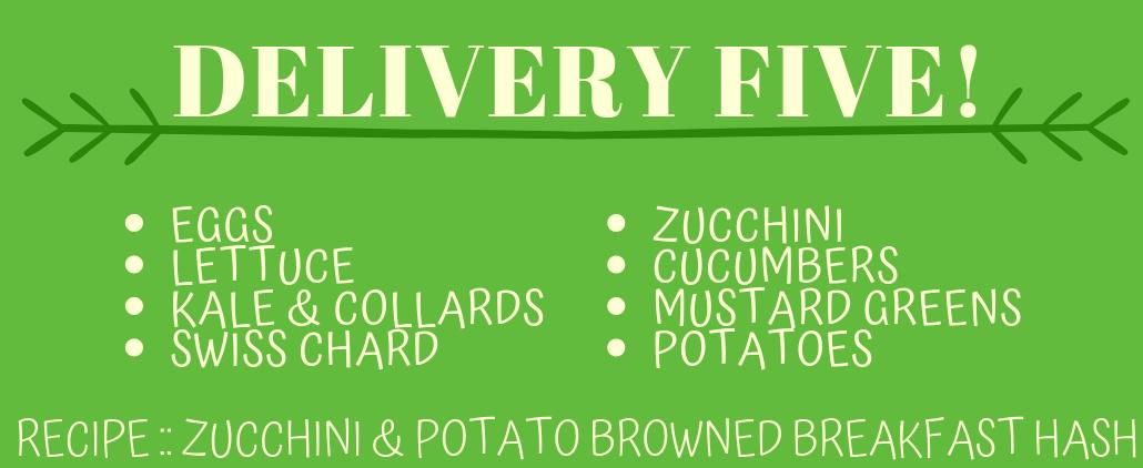 Delivery 5! (Recipe: Zucchini & Potato Browned Breakfast Hash)
